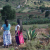 In Mexico, ecotourism helps traditional agriculture survive